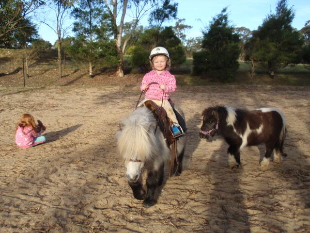Ponies/ChuckyandAnisiaTobyandArella.JPG